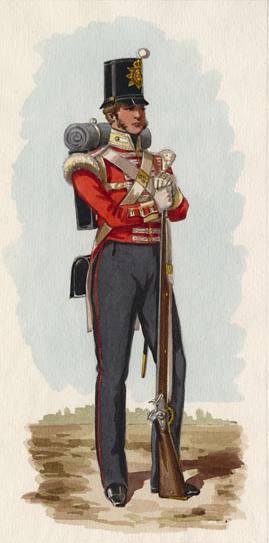 83rd Regiment of Foot - 1838 uniform